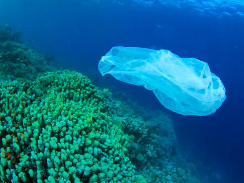 Sustentabilidade: imagem do plástico sob risco de erosão