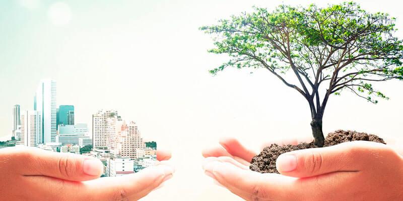Sustentabilidade é exigência do consumidor final!